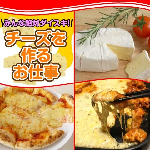 北海道ハピネス株式会社/食品工場【チーズの製造】